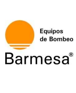 Logotipo Barnes