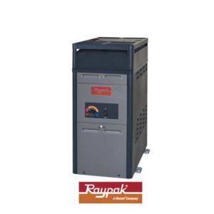 Calentador Raypak 106