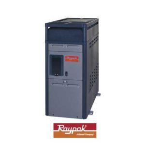 Calentador Raypak 156